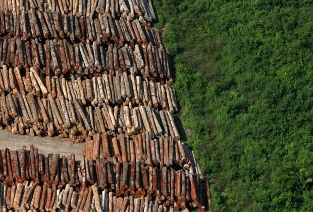 """Brasil, Santarém, PA. 05/06/2009. Madeireira ao lado de área com vegetação ainda nativa, preservada, no município de Santarém. A cidade é conhecida como a """"Pérola do Tapajós"""", devido ao rio que banha a cidade. - Crédito:ALBERTO CÉSAR ARAÚJO/AE/AE/Codigo imagem:41882"""