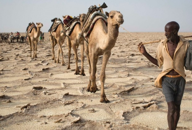 22abr2013---homem-puxa-camelos-pela-depressao-de-danakil-na-etiopia-um-dos-lugares-mais-quentes-do-planeta-1444424077775_956x500