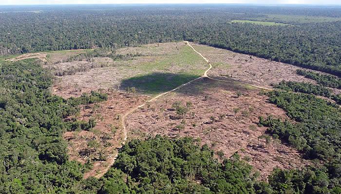 aumento-do-desmatamento-na-amazonia-8
