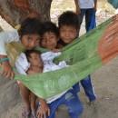 Crianças warao fora do abrigo buscam proteção em uma árvore