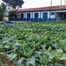 Escola-Rural-2