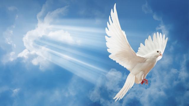 Espírito-Santo