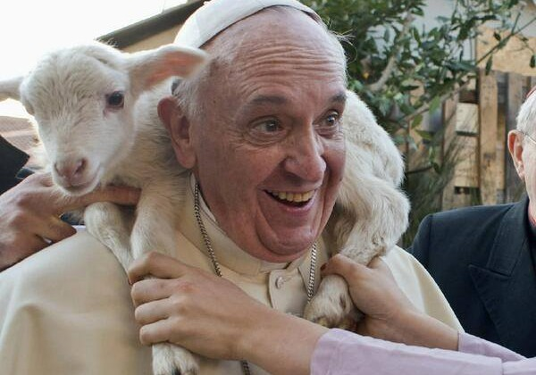 o-bom-pastor-papa-francisco