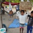 Um cajueiro se tornou a morada de indígenas Warao. Cartaz anuncia pedido de ajuda para comer