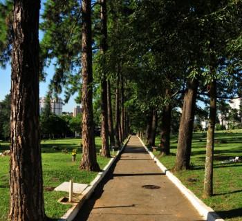 cemiteriocongonhas1