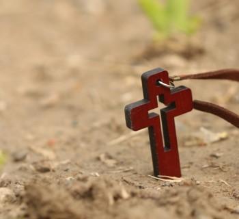 cruz-