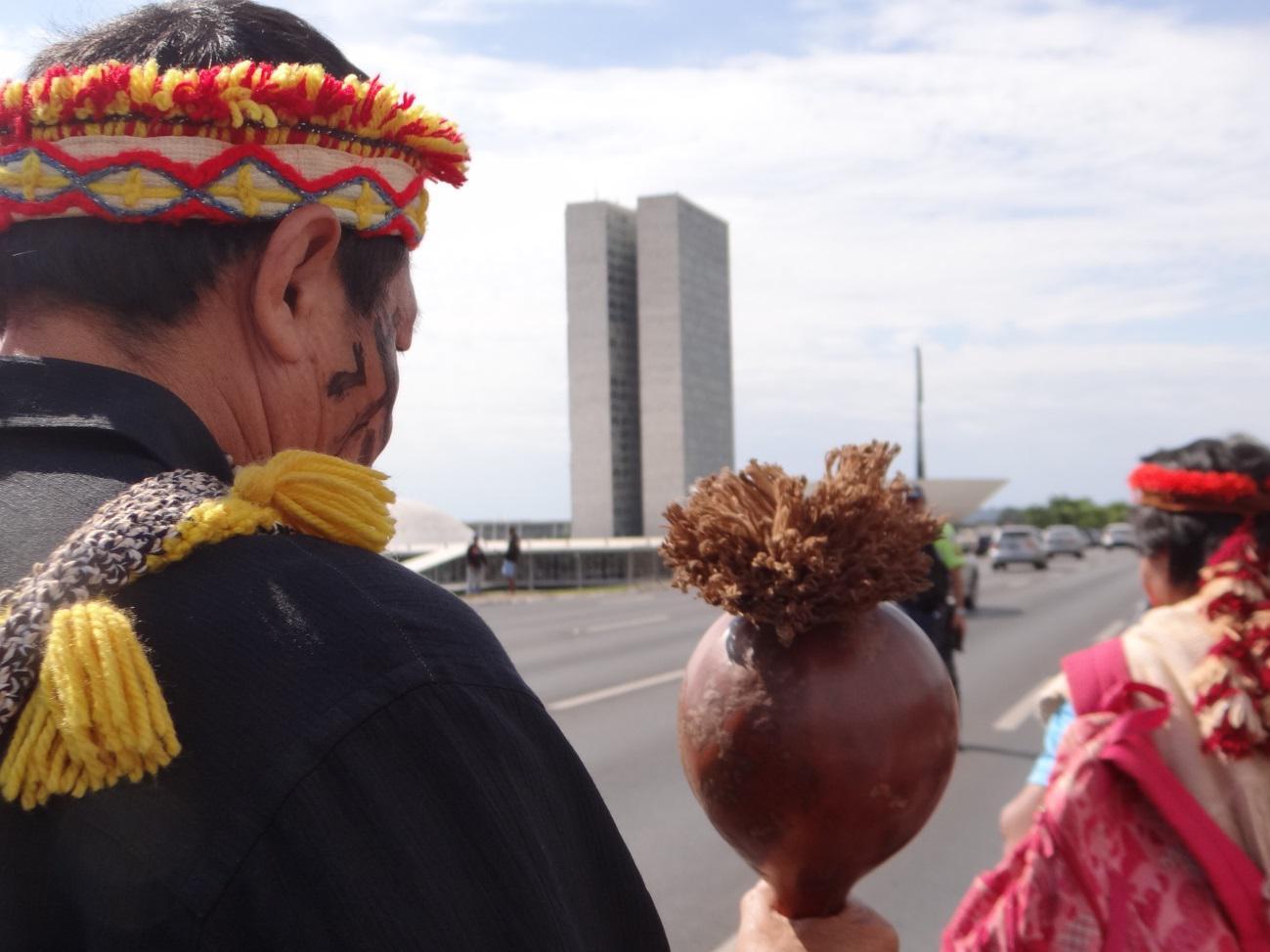 guaranikaiowá2