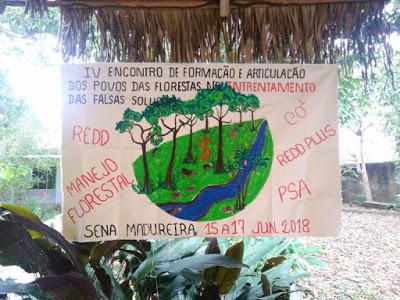 povosindigenas4
