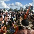povosindigenasterralivre1