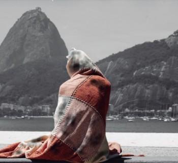 Ministério Pulico do Rio de Janeiro, da Cartilha de Orientação do Centro de Apoio Operacional das Promotorias de Justiça de Tutela Coletiva de Defesa da Cidadania.