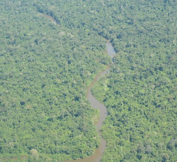 24-INMD-Floresta_amazonica_na_Terra_Indigena_Yanomami