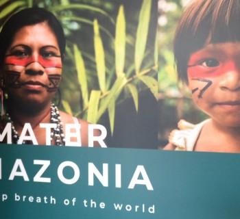 Mater Amazônia - Museu Anima Mundi-Musei Vaticani