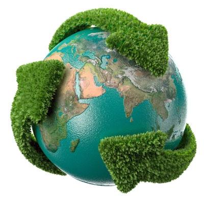 Resultado de imagem para imagens sobre ecologia