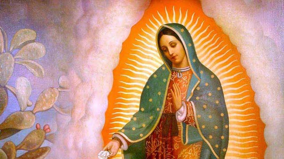 Mensagem De Nossa Senhora Aparecida Que Ela Cuide De: Devoção Mariana E O Cuidado Da Natureza